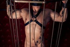 total bdsm slave